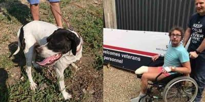 Wzruszająca para: pies po amputacji adoptowany przez byłego żołnierza