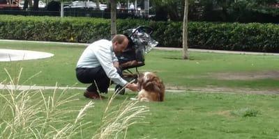 Myślał, że nikt go nie widzi: uklęknął przed starym psem i zrobiło się o nim głośno