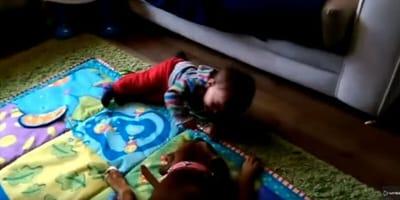 Bokser bawi się z chłopcem, kiedy dochodzi do ataku… śmiechu! (VIDEO)