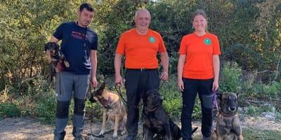 perros rescate españa IRO