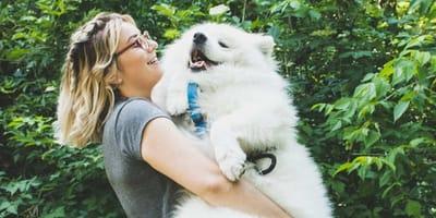 Gli italiani trattano cani e gatti come figli: il sondaggio