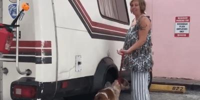 Maltratta il suo cane, arrestata 26enne (Video)