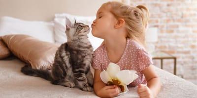 bimba-gioca-con-gatto