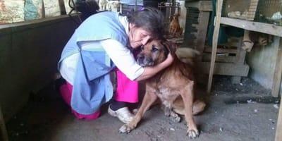 donna-anziana-abbraccia-un-randagio