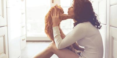 Parlare con i gatti? Ecco come fare per comunicare con Micio