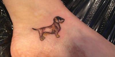 Die schönsten Dackel-Tattoos auf Instagram