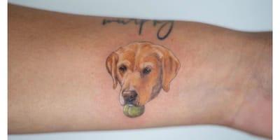 Die schönsten Labrador-Tattoos auf Instagram