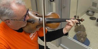 """Martin Agee, il violinista che """"cura"""" i cani con le note di Bach"""