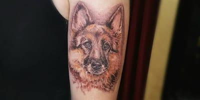 Das sind die schönsten Schäferhund-Tattoos auf Instagram