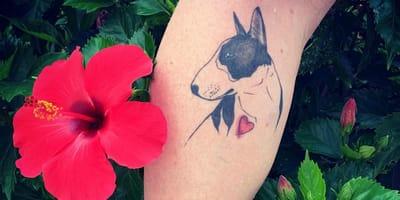 Die schönsten Bullterrier-Tattoos auf Instagram