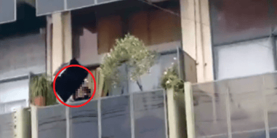 lanza gato vivo balcon ourense