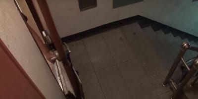 Ten kot przychodzi do nich codziennie punkt 19.00. I ma ważny powód (VIDEO)