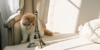 Kätzchen mit Eiffelturm-Figur