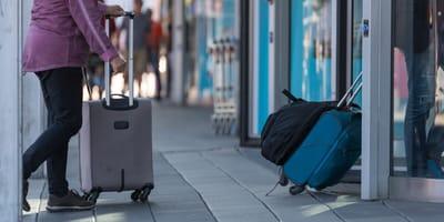 gato se cuela equipaje mano aeropuerto