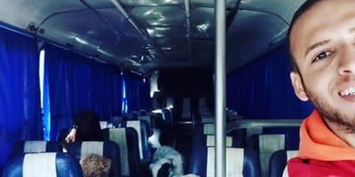 autobus recoge perros
