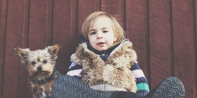 Cane di taglia piccola con bambino