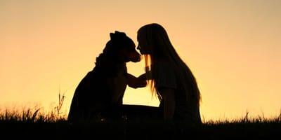 pozegnanie z psem
