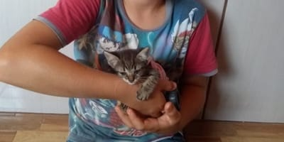 Boy cuddling disabled kitten
