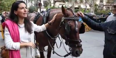 video polemica vox partido ultraderecha elecciones animales caballos bienestar sevilla
