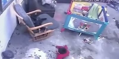 CCTV footage of cat running to save toddler