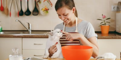 Pet chef: 2 homemade recipes for the best cat treats