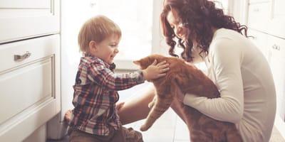 mamma-presenta-il-gatto-al-figlio