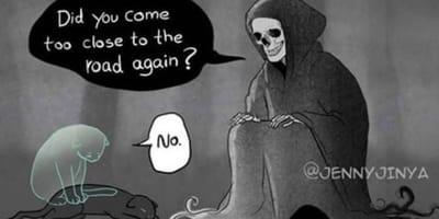 vignetta-sul-gatto-nero-e-la-morte