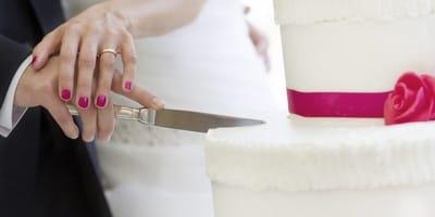 Encargaron un pastel de boda con su husky: lo que el pastelero trajo hizo reír a todos
