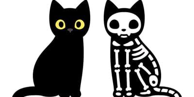 Lebendige und tote Comic-Katze