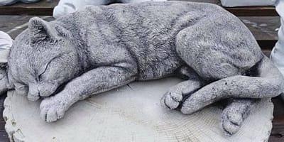 rzeźba kota