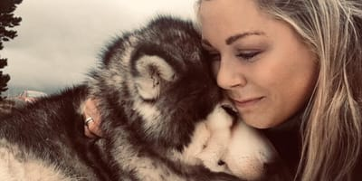 woman hugs her malamute in the snow