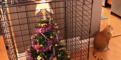 gato destroza arbol navidad