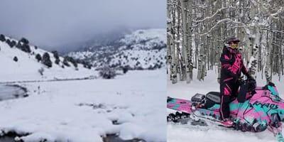 Snowy wilderness
