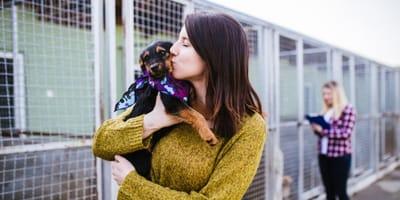cuanto cuesta adoptar a un perro