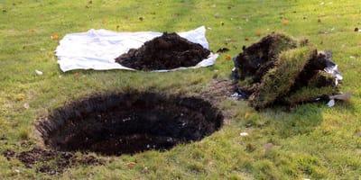 Mann will sein Kätzchen im Garten begraben. Dann passiert eine Tragödie!