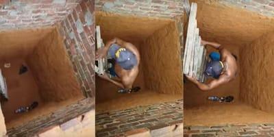 Cat stuck in chimney