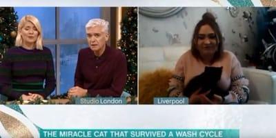 Still from ITV's This Morning show