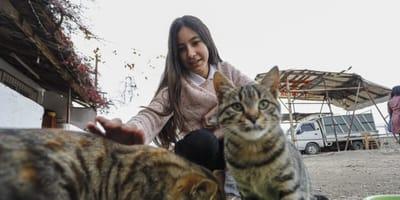 Seda codziennie dokarmia okoliczne koty