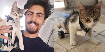 Ahmed i kotek z protezą
