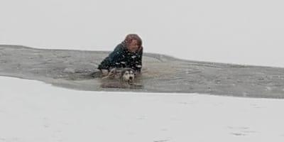 recate perro lago congelado