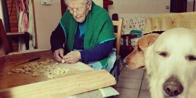 Nonna-Vita-con-i-suoi-cani