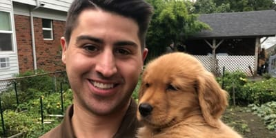 UPS dogs has over 1million likes on social media
