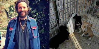 Jovanotti - cani del canile in gabbia