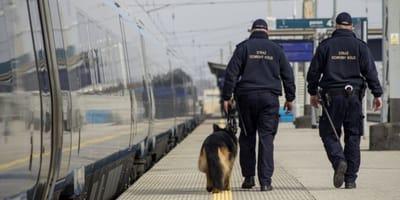 Pies_funkcjonariusze Straży Ochrony Kolei