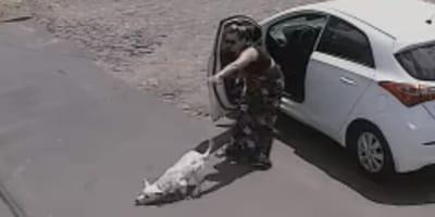 Frau zieht behinderten Hund aus Auto: Kamera hält ihre ganze Bösartigkeit fest