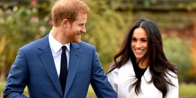 The Royal Couple could spend more time with their dogs