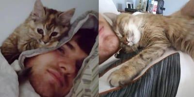 Man cuddling tortoiseshell kitten