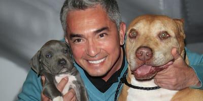 Cesar Millan mit zwei Hunden