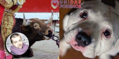 proteccion animal espana podemos