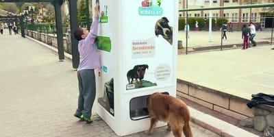 Automaty do recyklingu ratują planetę i karmią bezdomne zwierzęta
